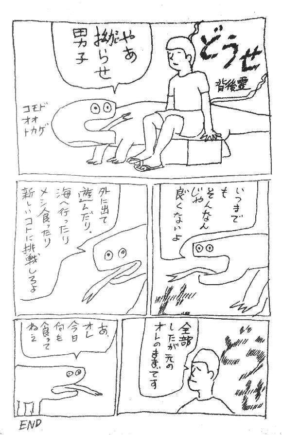 コモドオオトカゲの画像 p1_31