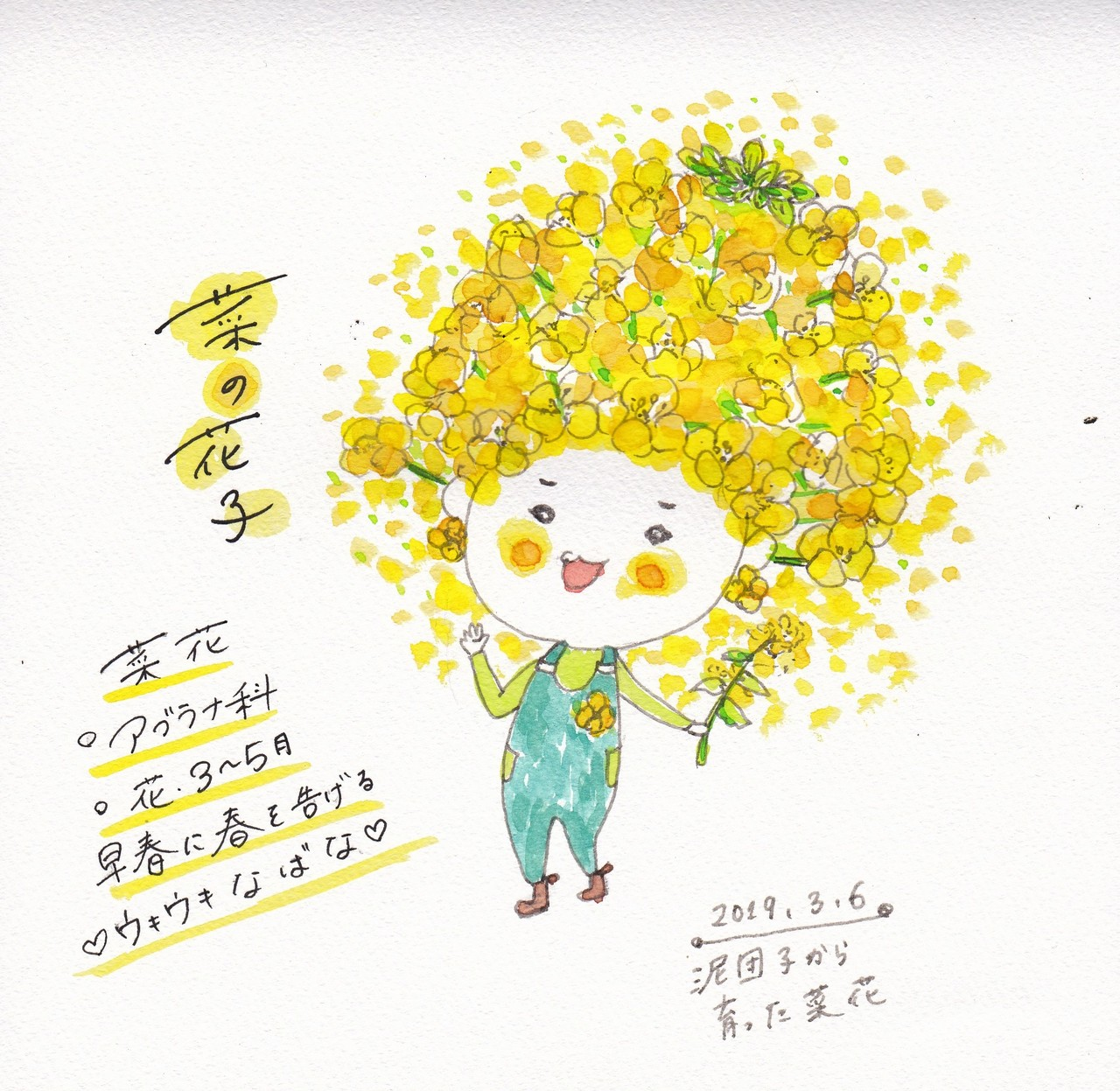 春の訪れを可愛い黄色でお知らせしてくれる菜の花子さん。福岡正信さんの泥団子をパーマカルチャー教室で作り、家の花壇にそっと放置。元気に可愛く実ってます。