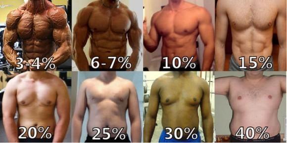 脂肪 率 方 体 落とし