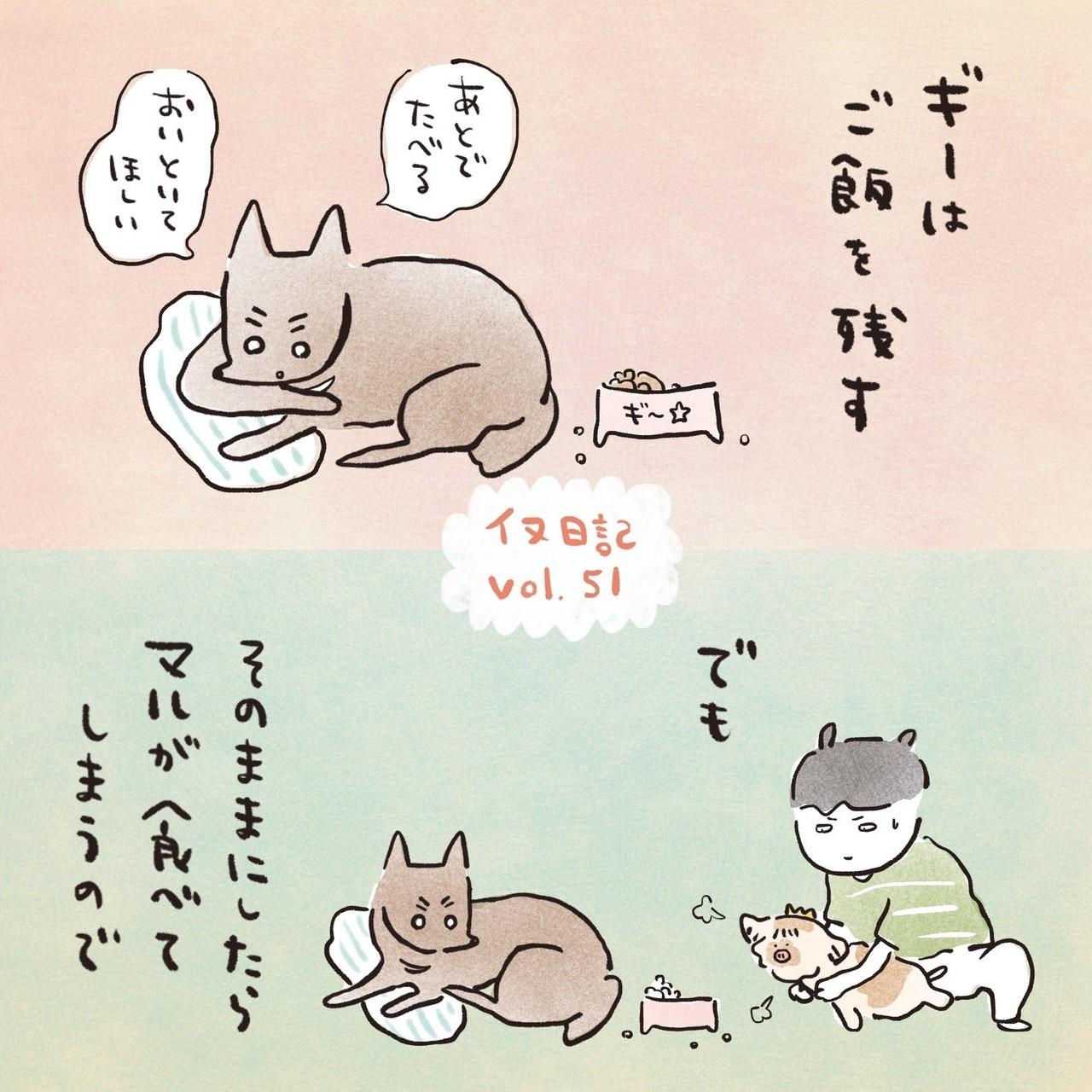 イヌ日記vol.51-1