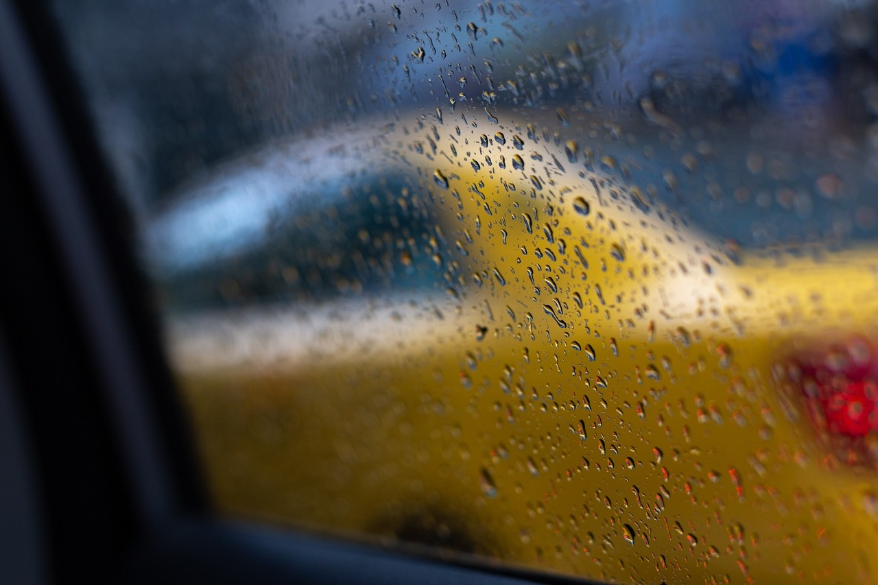 ニューヨークのシンボルの一つは黄色いタクシー。いまではUberで移動している私ですが、マンハッタン島にはまだまだたくさんの黄色のタクシーが走っていました。 1.雨の中の偶然を生かすために車の中から雨をメインに背景にタクシーがわかるように撮りました 2.黄色を少し目立つように全体の露出は控えめにしてます ISO100|100mm|f/3.5|1/250秒 CANON 6D EF50mm