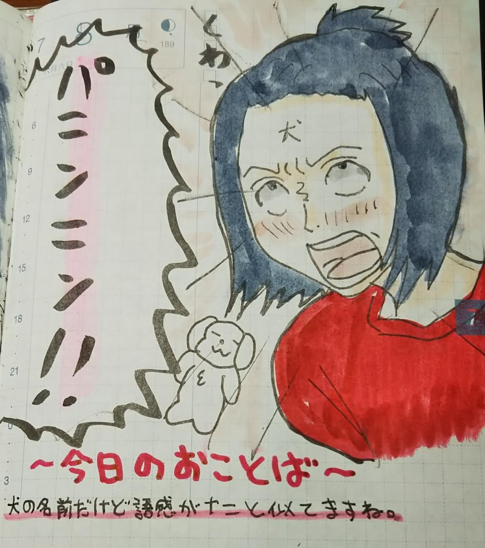 2019/07/08今日のお言葉