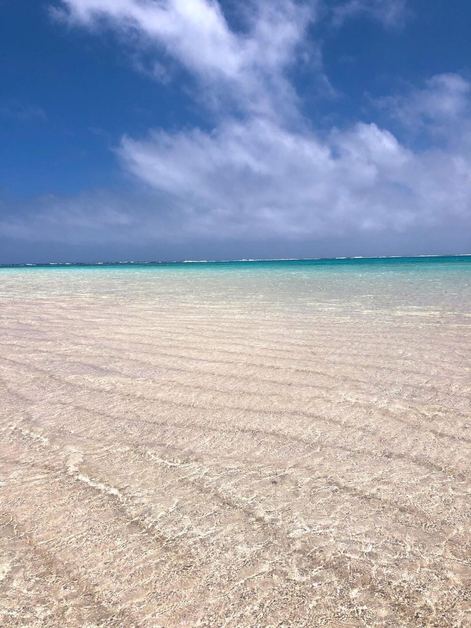 鹿児島県の離島、与論島へ行ってきました。目当ては「幻の浜」と呼ばれる〝百合が浜〟 今回は、初めてのレンタル水中カメラについてレポ📷