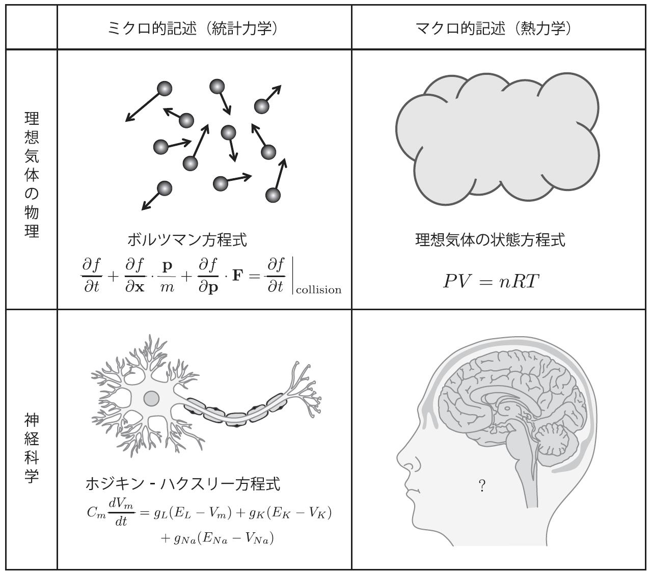 神経科学は脳をどこまで理解したか 森北出版 note