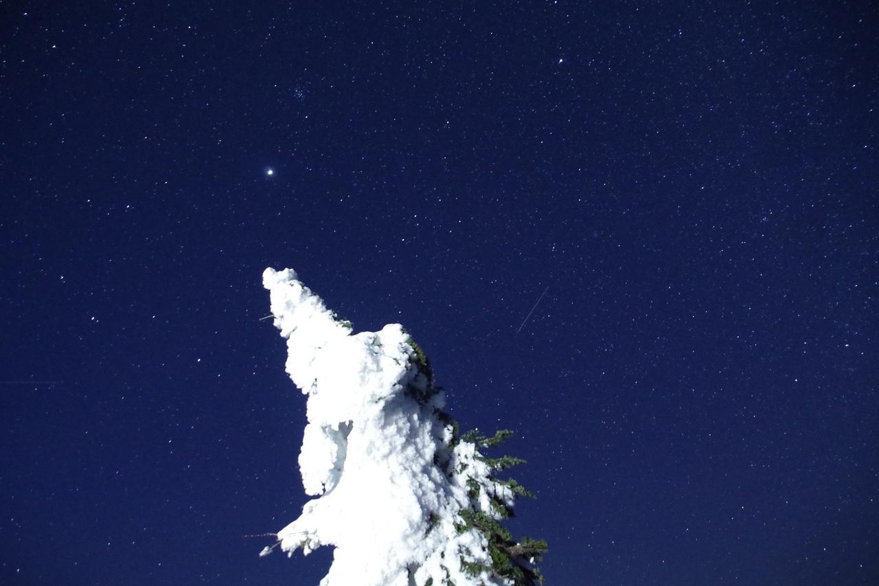 2015/03/08 夜の樹氷鑑賞会 at 阿仁スキー場 ライティングされた樹氷と星空