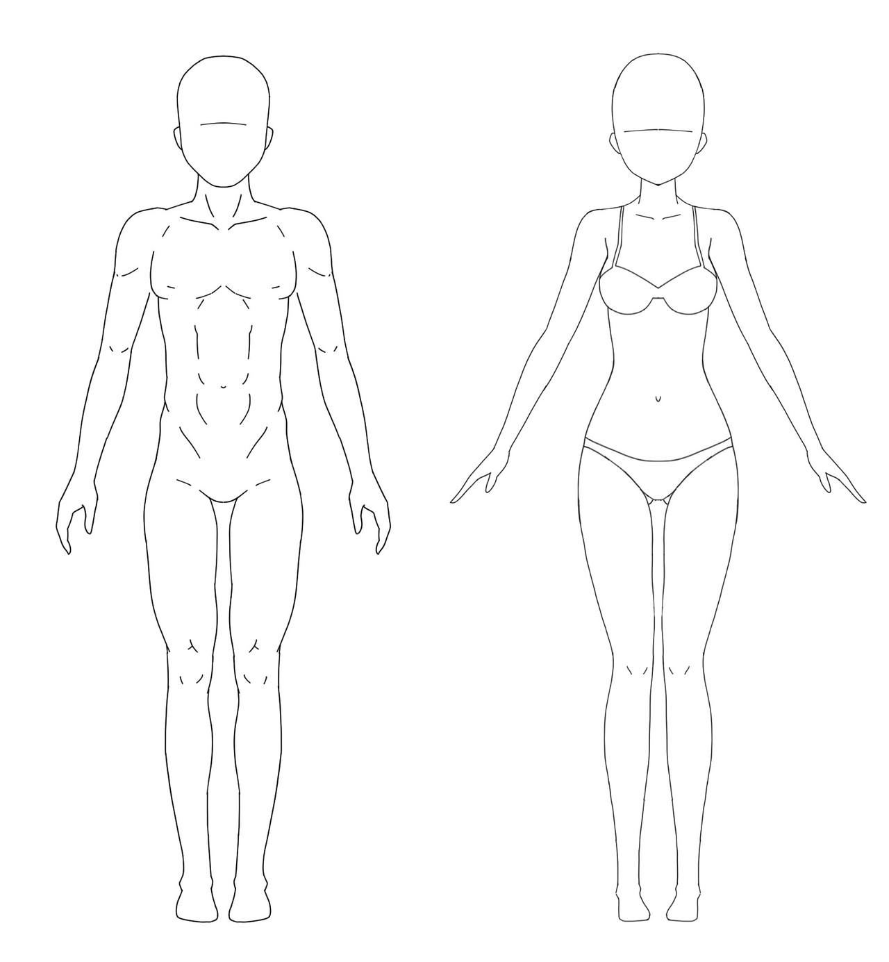 脂肪 お腹 女性 周り 落とす