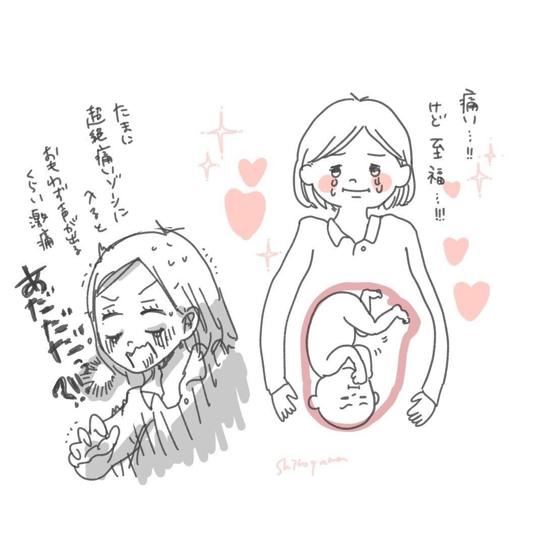 しゃっくり 胎児