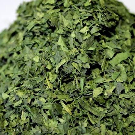 抹茶の原料はてん茶(碾茶)