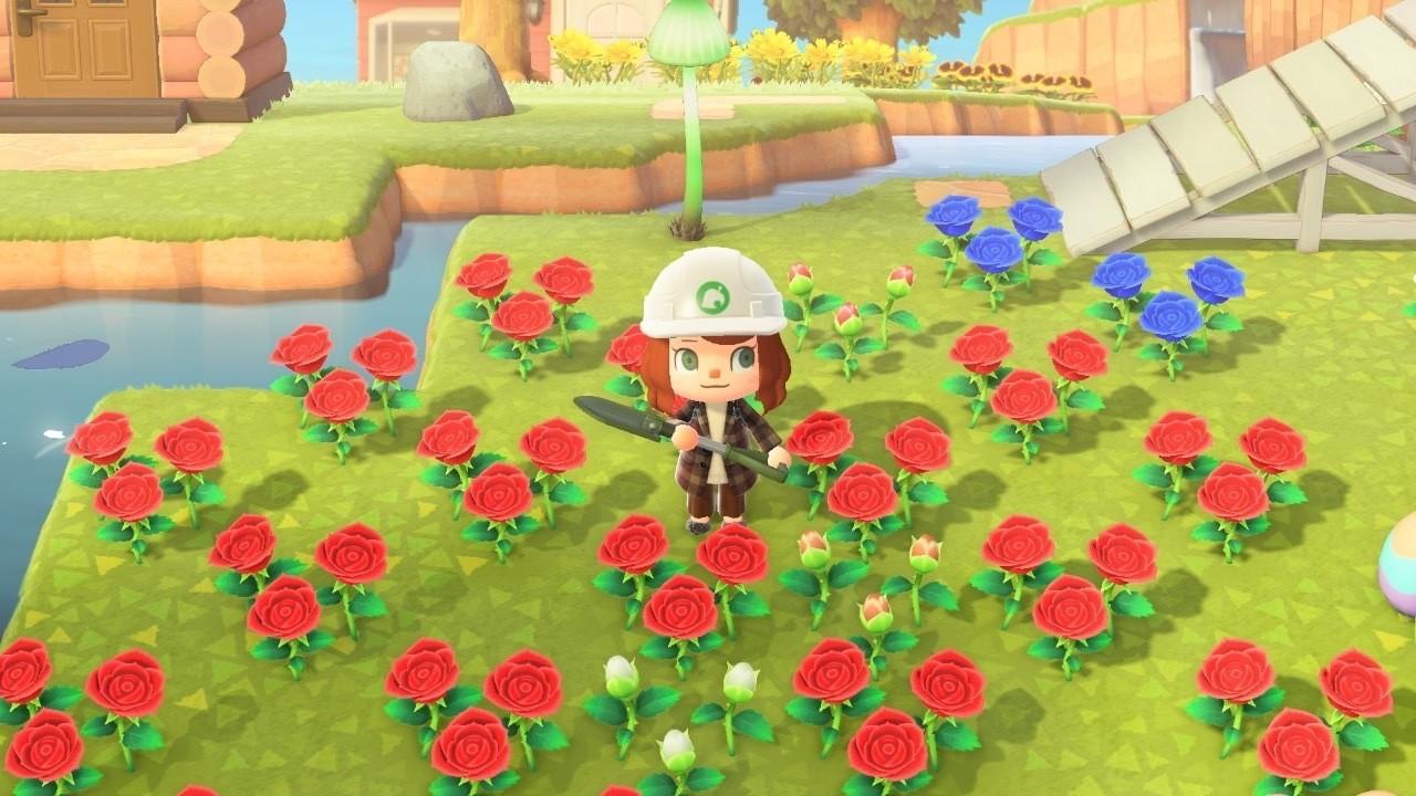 森 バラ あつ