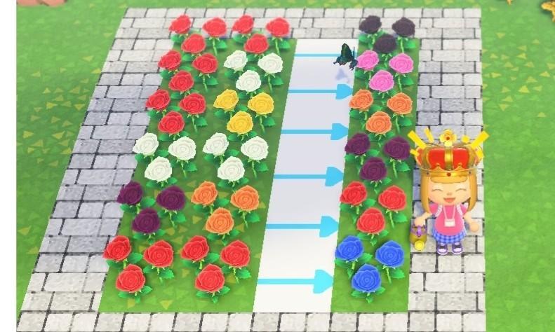あつ 森 花 の 交配 仕方