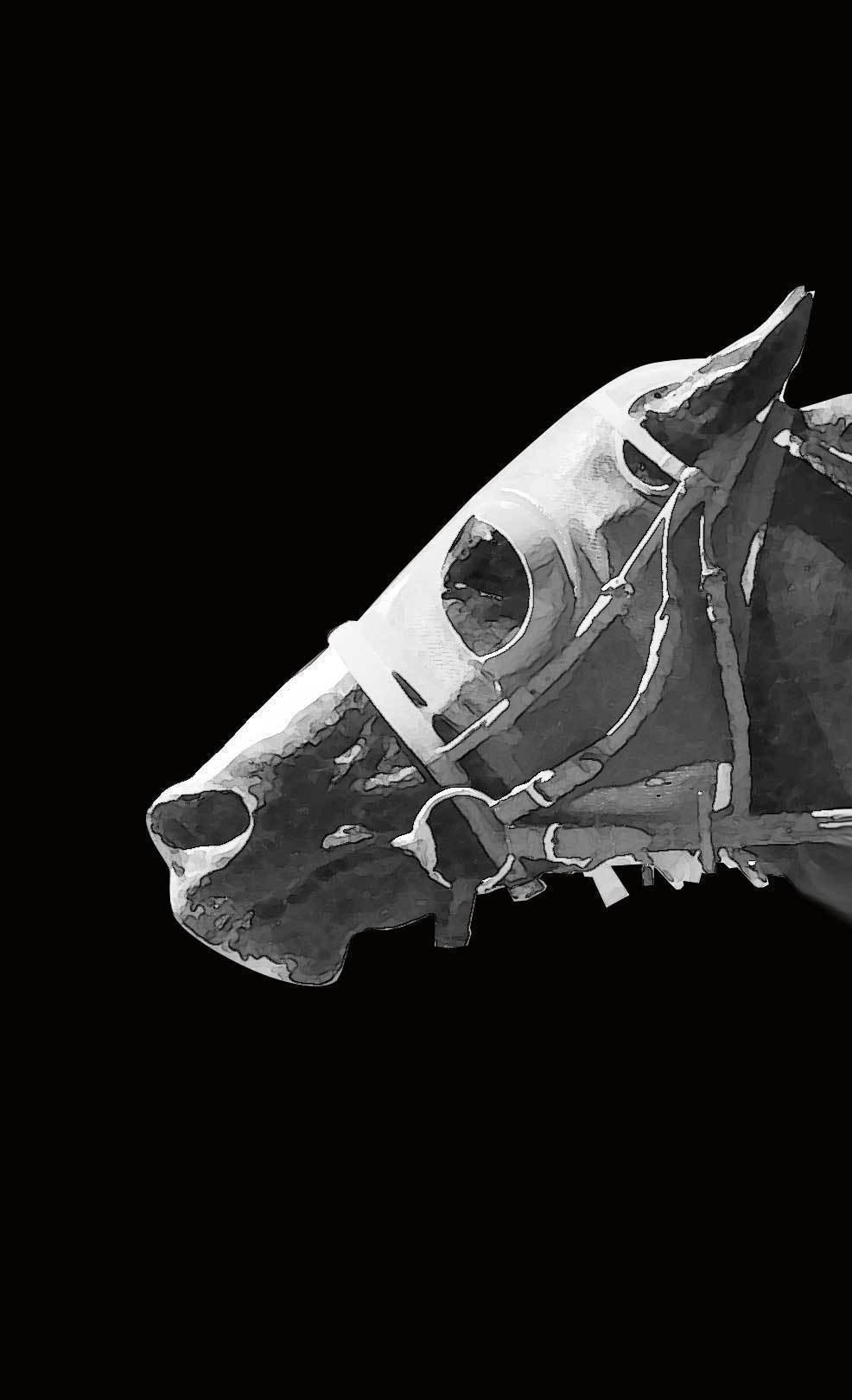 モノトーン馬の壁紙スマホ版 ニック Note