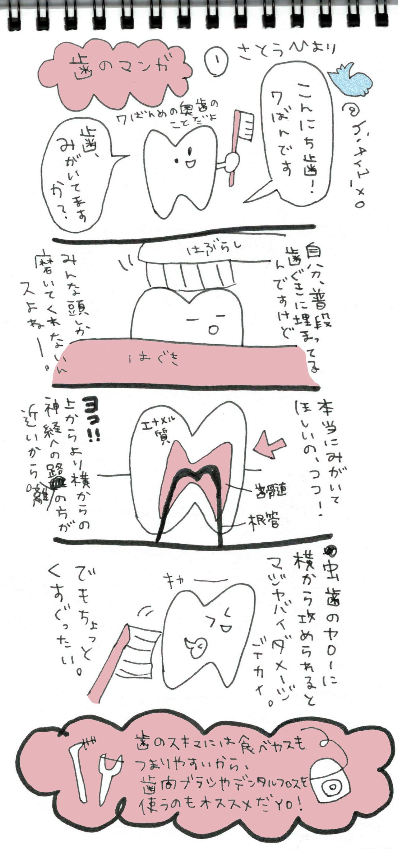 本日、楽天さんの「それどこ(それ、どこで買ったの?)というメディアに寄稿した歯グッズコラム http://srdk.rakuten.jp/entry/2016/08/02/110000 も公開しました。見てね!