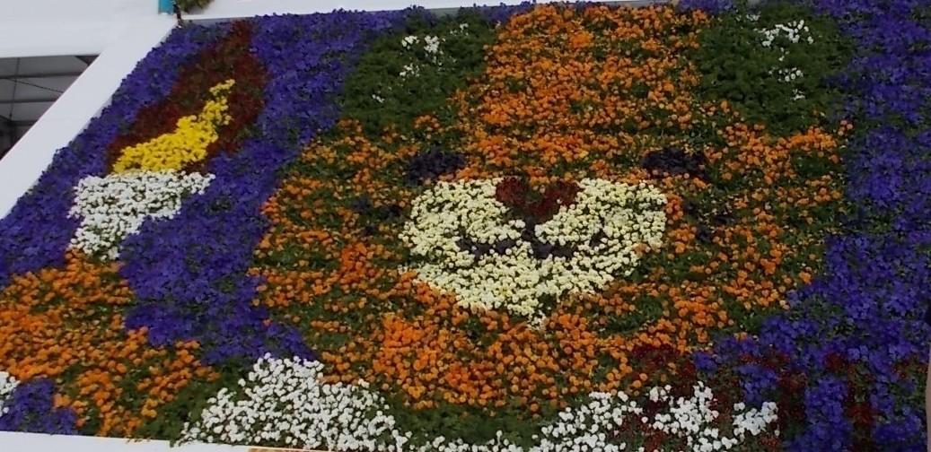 会場にあった花による「みきゃん」