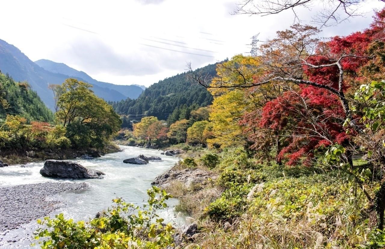 11月前半に行った御岳渓谷。 ちょっと時期は早くて、ところどころの紅葉でしたが、日差しも温かく、木々も生き生きと見えて、心地良い気分になりました。