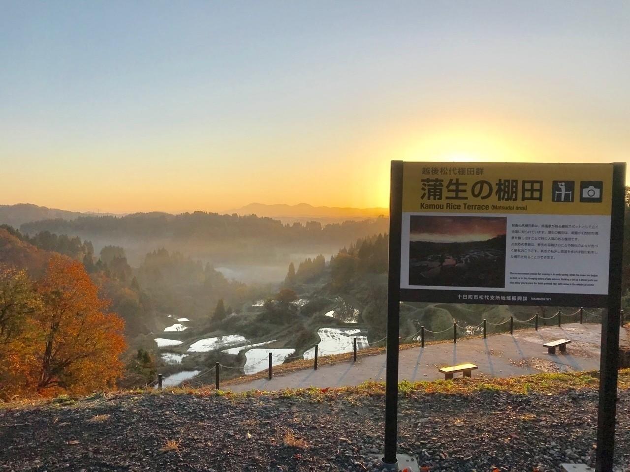 蒲生の棚田の朝日。 芝峠温泉雲海の宿泊客も撮影しに訪れていました。