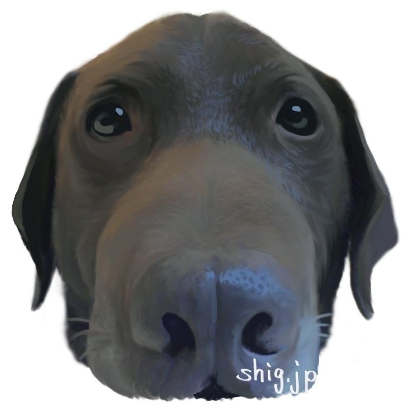 今年の干支イラストは3年前に天寿を全うした「我が家の頼れない番犬チャック」です。魚眼レンズ風味を強めて描いたら某シリーズ作のパロディみたいになってしまいました(汗)