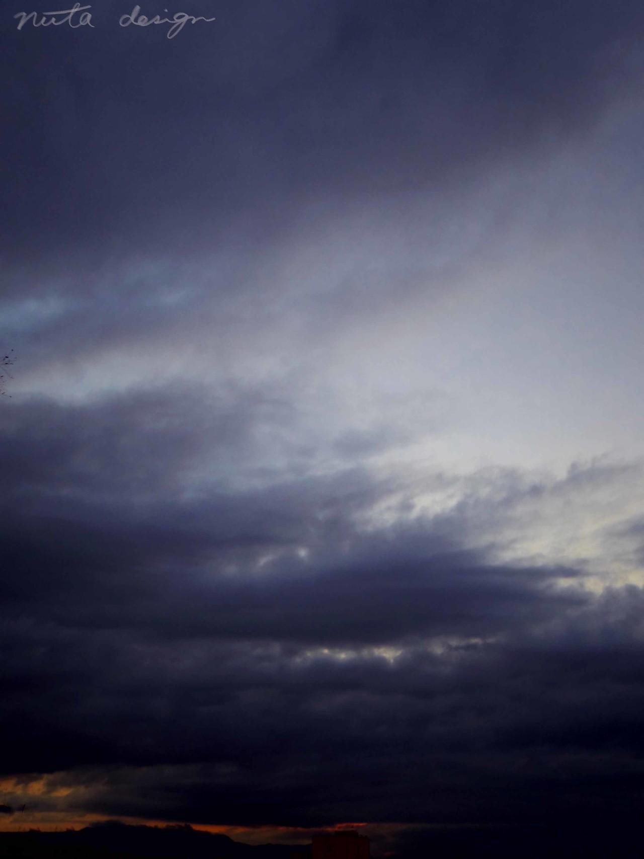 雨の一日。身体の芯まで染み透るような寒さ、実際の気温とは連動していないのだけど