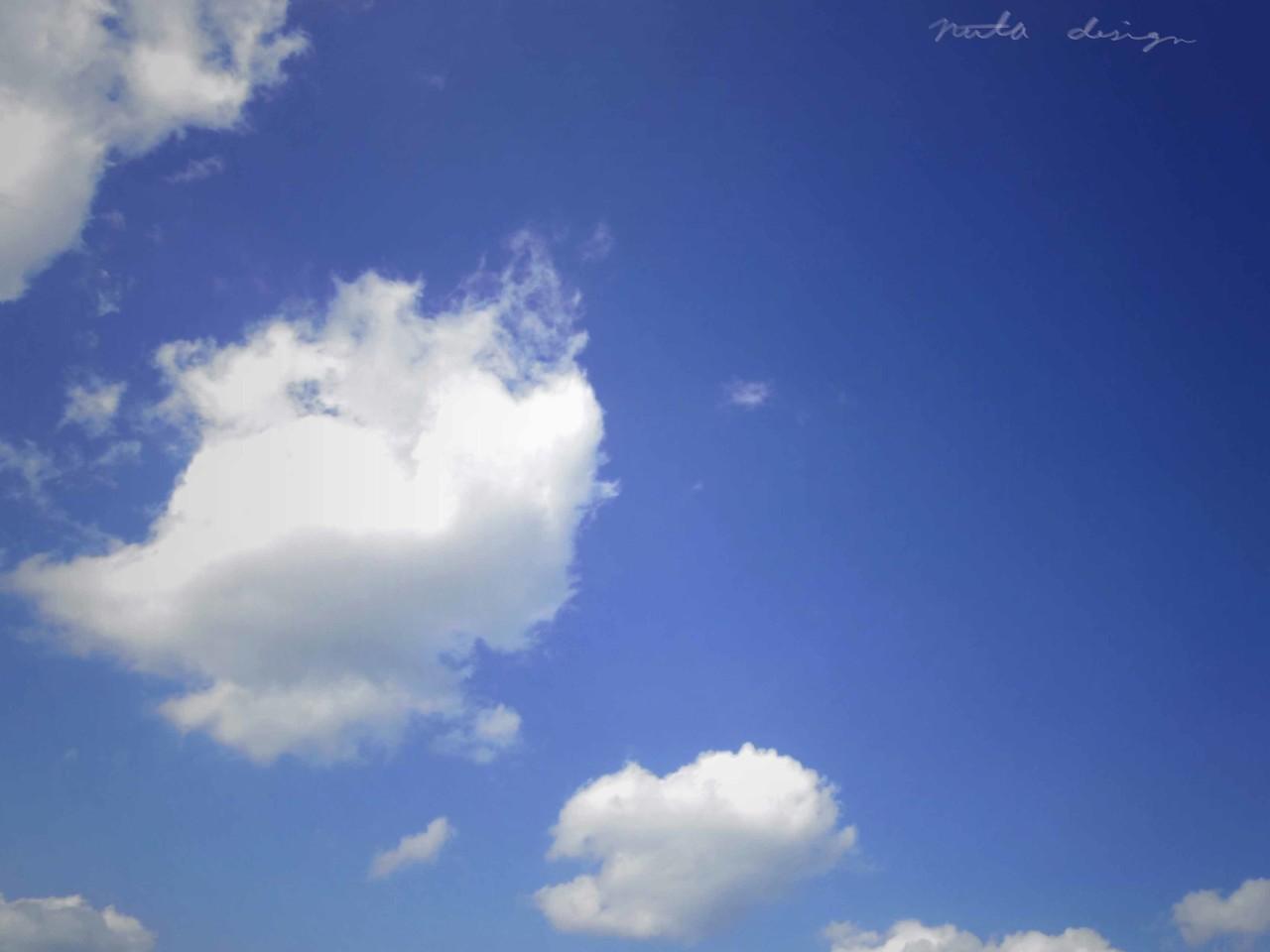 ぽっかりと浮いた雲。ああ。あったかい。花粉。