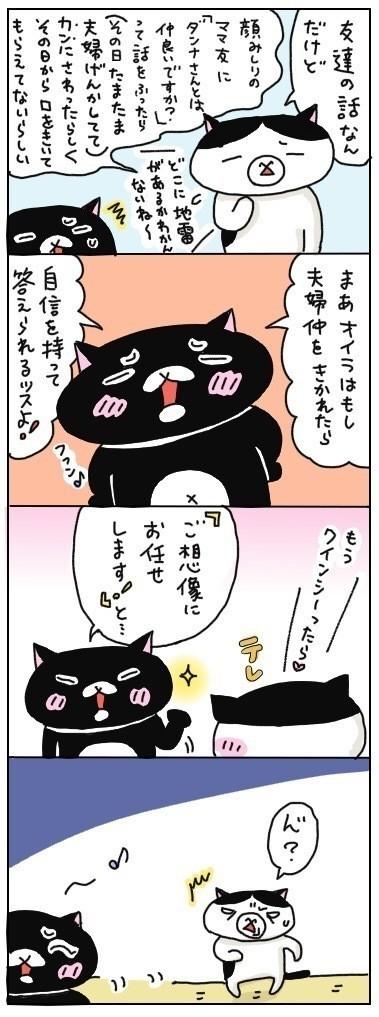 自信を持って答える方向が、明後日の方向を向いている黒猫クインシーなのでした☆  チャンチャン♪