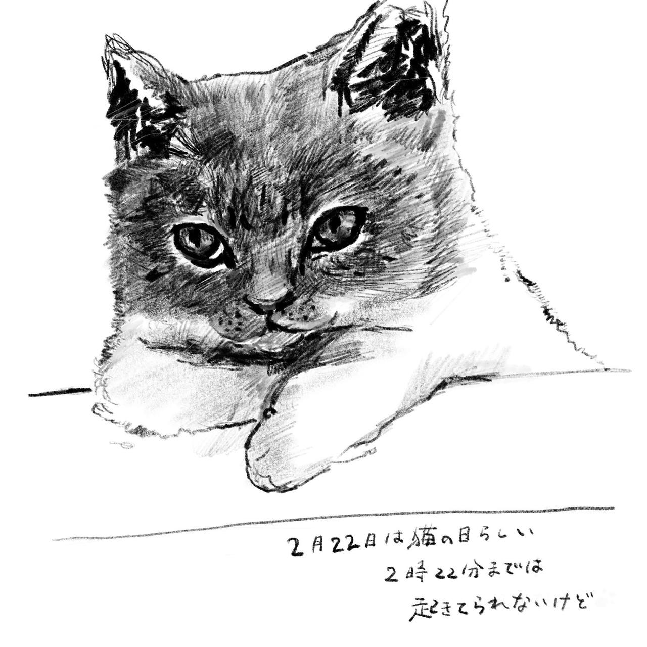 こどもの頃、家ではいつも犬や猫がいて家族の一員だった。みんなが出かけて自分が一人の時にも、家に毛むくじゃらな犬や猫がいるとなんとなくさびしくなく、かといって近づきすぎることもない、不思議な距離感。長毛種の猫ですごくかわいい猫がいた時は、なぜたり触りたくなるものの、気位が高い猫で、こちらが手を近づけただけで噛み付いたり引っ掻いたり。手が傷だらけになりつつ、めげずにさわろうとがんばった記憶がある。その頃から20年近く経ち、まだ手にうっすらと残っている傷跡を見ながら、楽しい猫たちとの日々を思い出す。