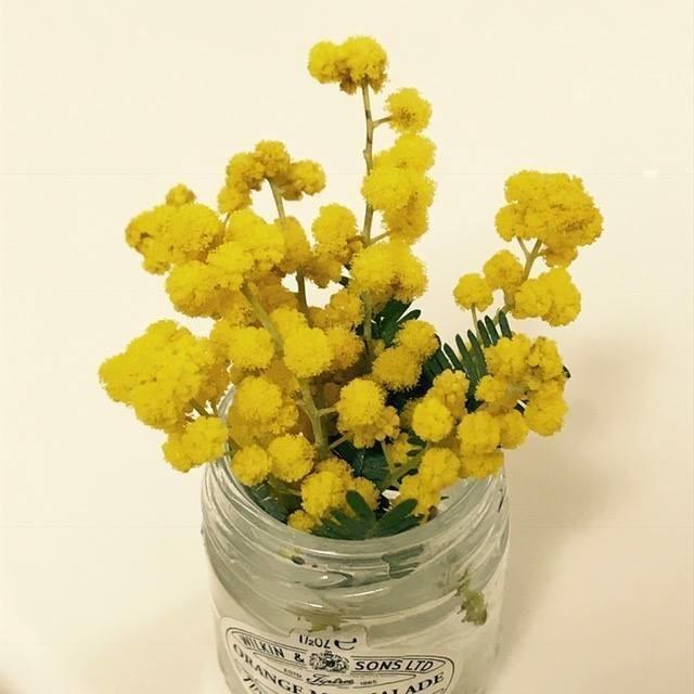 ミモザを一枝買ったのですが、家の花瓶に入れるために切り落とした小枝がたくさん出たので、ちっさい花束をたくさん作って会社にも持ってきた。 めっちゃ小さいけど、お花があると気分が明るくなってよいですなー!