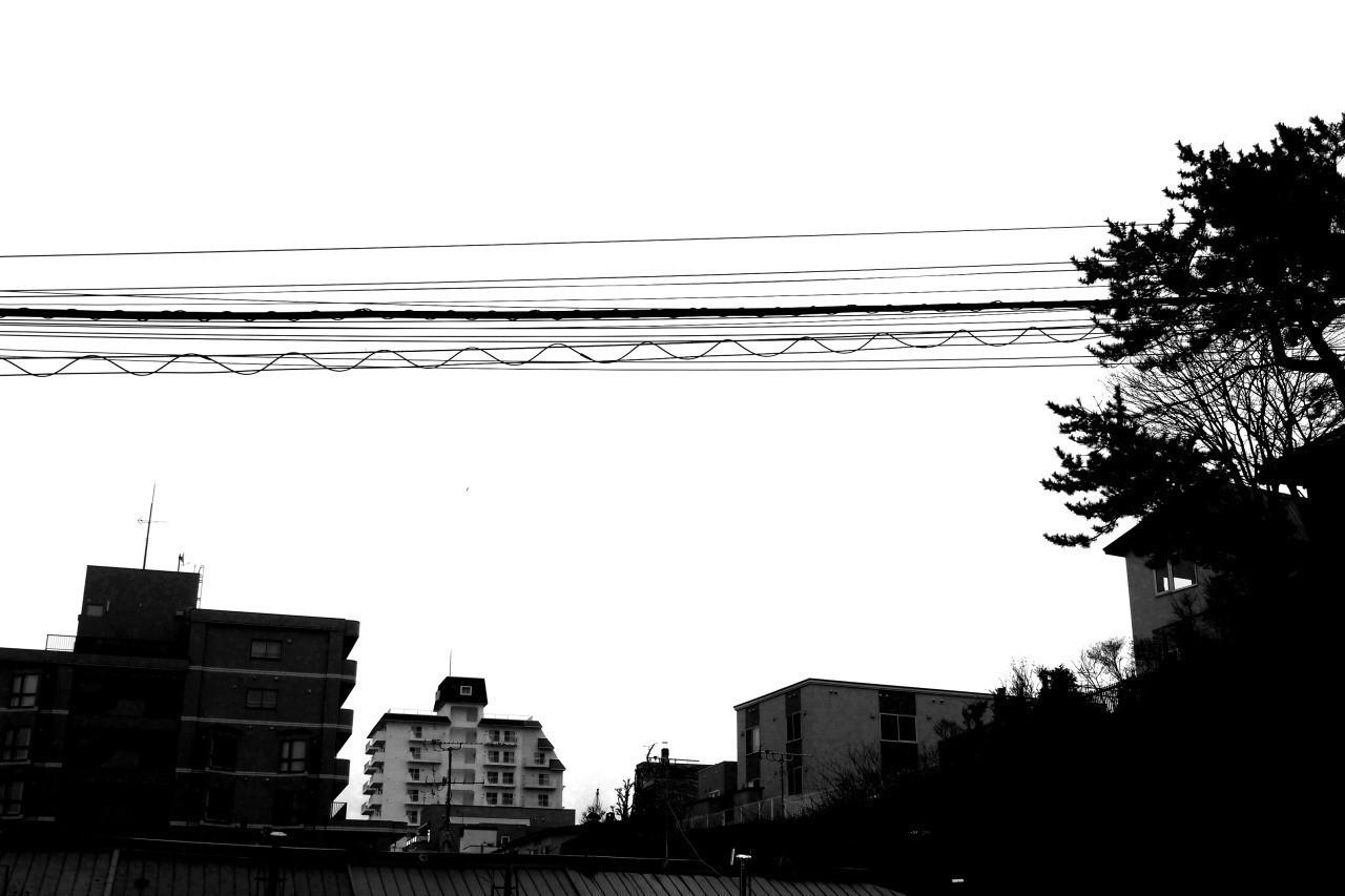 ずっと上ばかり見上げて、電線に切り取られた空を眺めていたいのだけれど、前も右も左も後ろも下も、見えてしまう