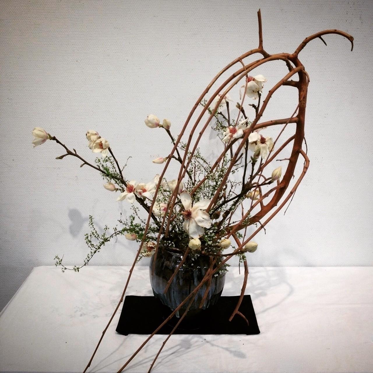 コブシ、雪柳、しだれ桑  寒風に耐え抜いた末に咲くから、春の花は美しい。  #華道 #いけばな #生け花 #草月 #草月流 #花 #植物 #アート #デザイン #いけばな男子#花のある暮らし