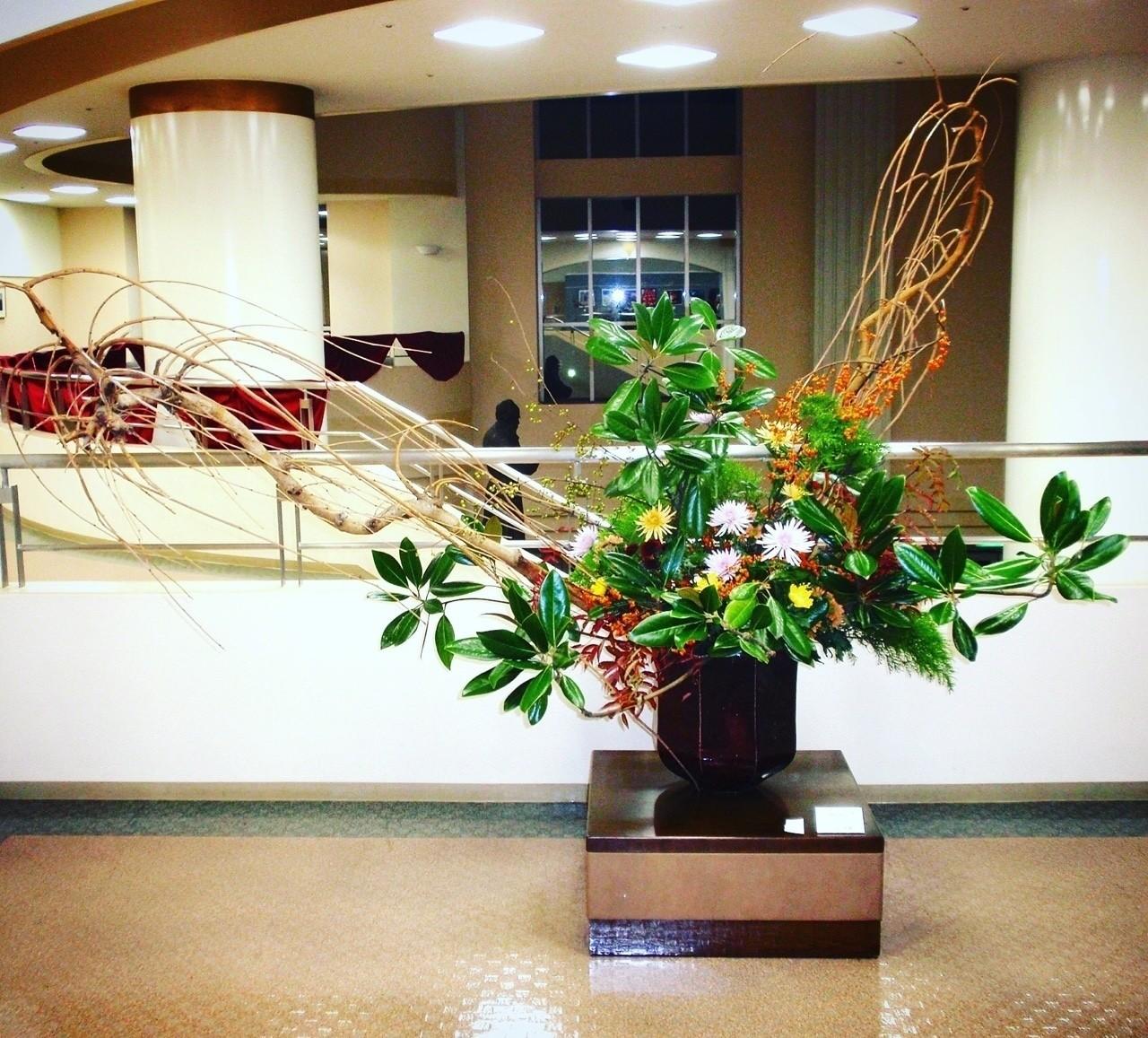 しだれ桑、泰山木、ツルウメモドキ、糸菊、ナナカマド  大学4年の学祭にて展示した個人作品。  いつも華道部でお世話になってた花屋さんで「大きなしだれ桑の枝がほしいんです!」と相談したところ、通常1〜2万円かかるところを「倉庫に買い手がない枝があるから、2本で2000円でいいよ」と格安で譲ってもらった。 生け込みの前日に大学の近所のお好み焼き屋さんに行ったら、お店のおばちゃんが趣味で毎年富士山の裾野でツルウメモドキを大量に取ってきていて、それをたくさん分けてくれた。 沢山の偶然と真心でできた作品です。