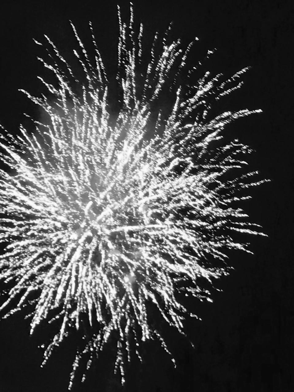 君と見る花火が1番嫌い。見上げる君は花火みたいにキラキラしてて。次の花火を待つみたいに次の瞬間を待っている。僕の見た花火はきっとこんな色をしてた。