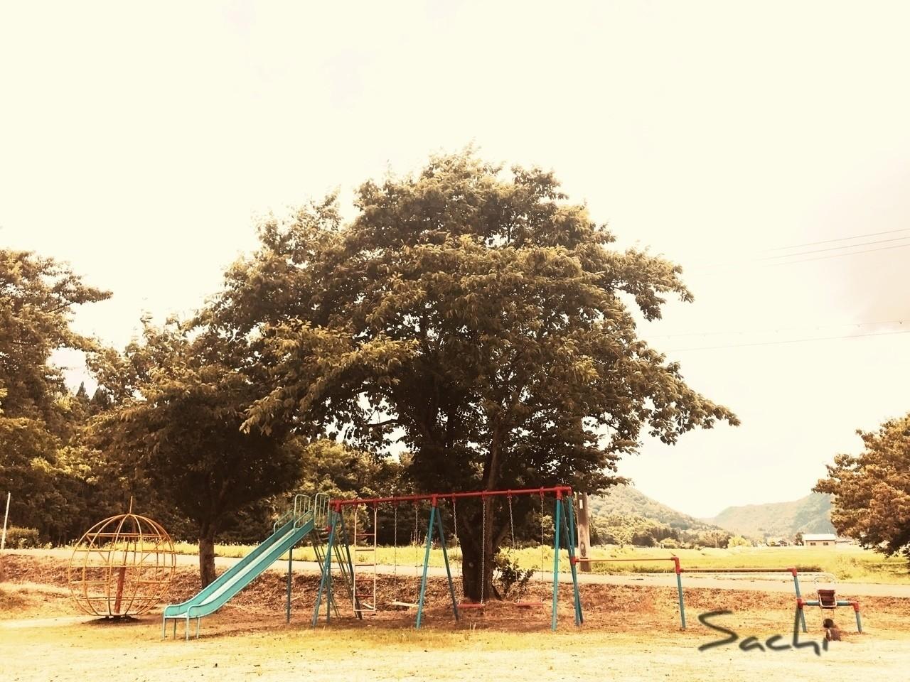 風の音がして  勢いに乗って  空に向かって一直線に  飛んでいけそうな感覚  好きだったな   #写真 #ブランコ #遊具 #小さな公園 #飛べそう