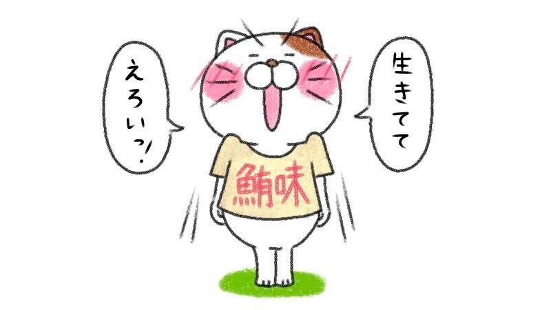 ↑6月27日 元気づけようとしたのに、言い間違えてしまうシャツ猫。 ↓6月28日 ややふざけてはいるものの、心から決勝T進出を願っているシャツ猫。シャツの柄のリクエストは、れいこさん https://note.mu/nojieru です♪