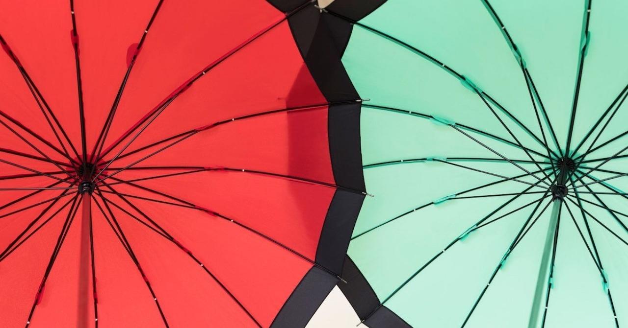 私が8年半いたWeb業界から、創業35年の傘の会社へ転職した理由