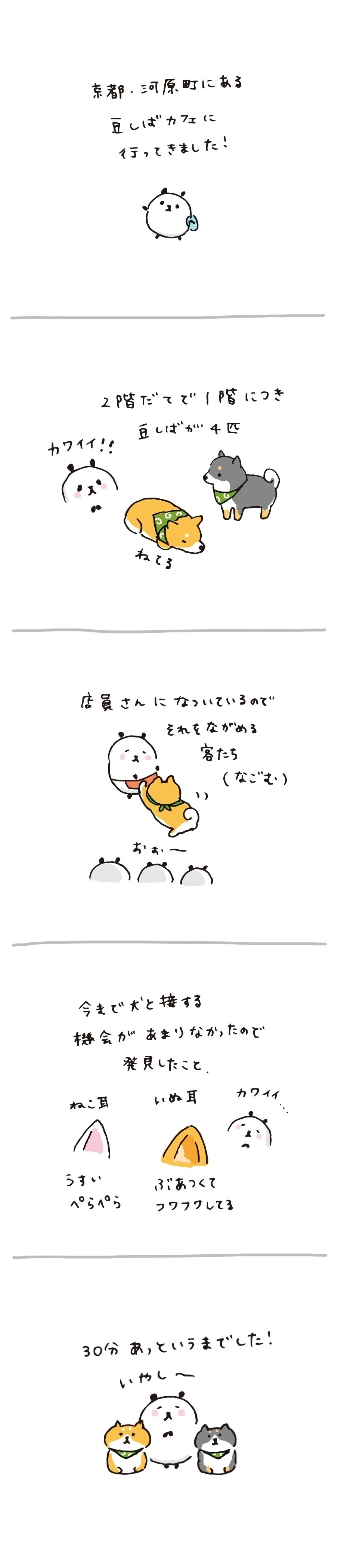 #カフェ #柴犬 #豆柴カフェ #イラスト