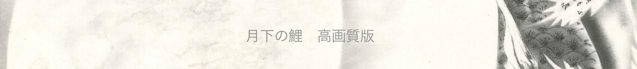 月下の鯉(平成27年)- 宮前吼宇