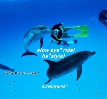 オリジナルstyle|イルカとクジ...