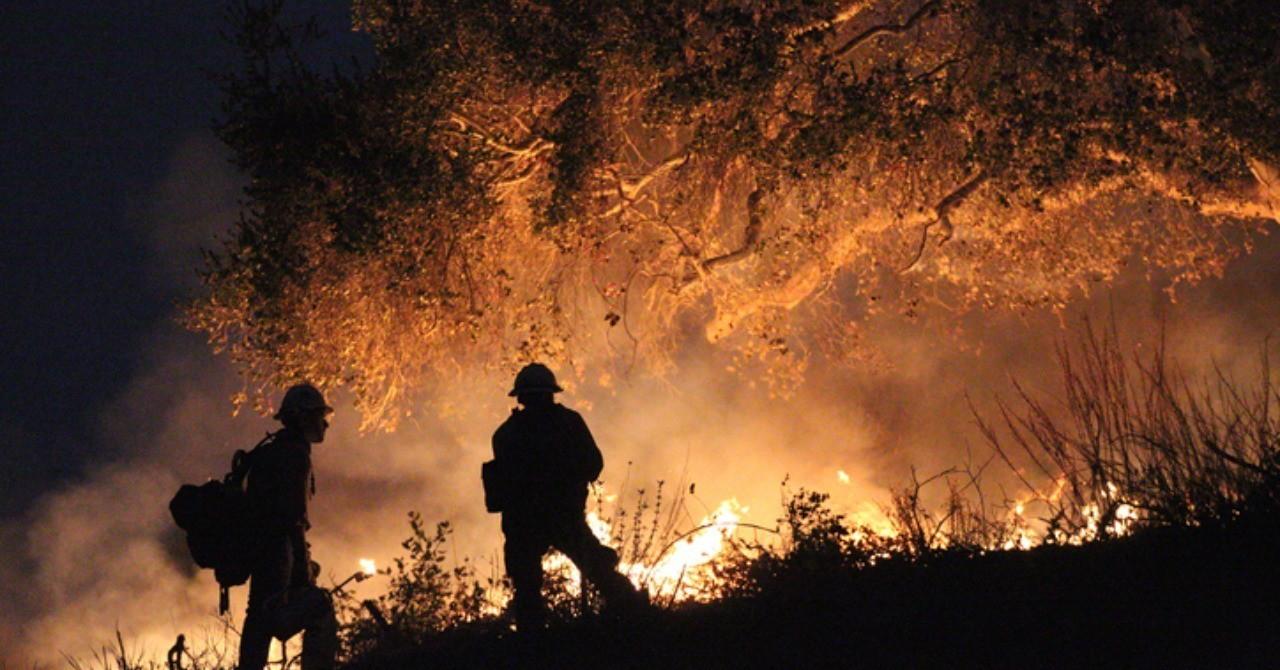 カリフォルニアの山火事を教訓に僕らがすべきこと