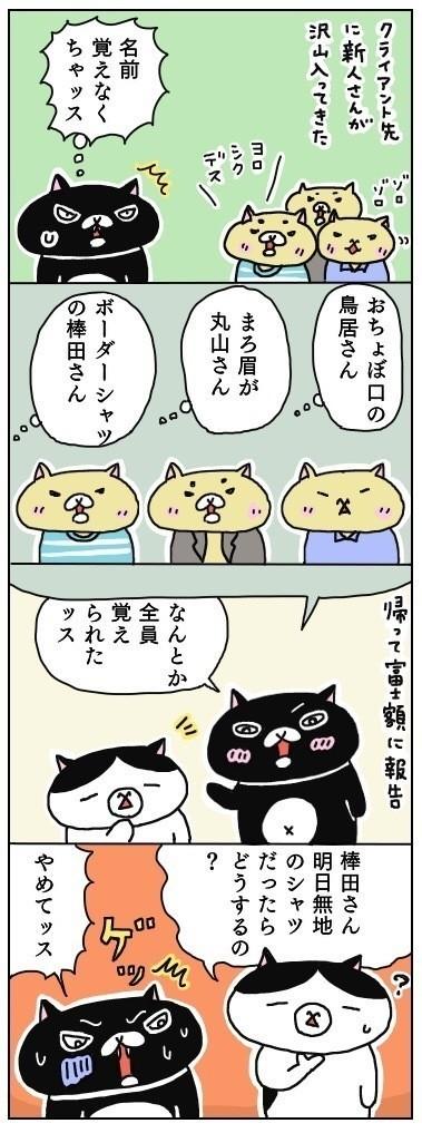 暗記する時に、イメージと言葉を関連付けて覚えるというのがあり、黒猫クインシーはよく実践しているそうなのですが、今回の件は、ちょっと心配ですw