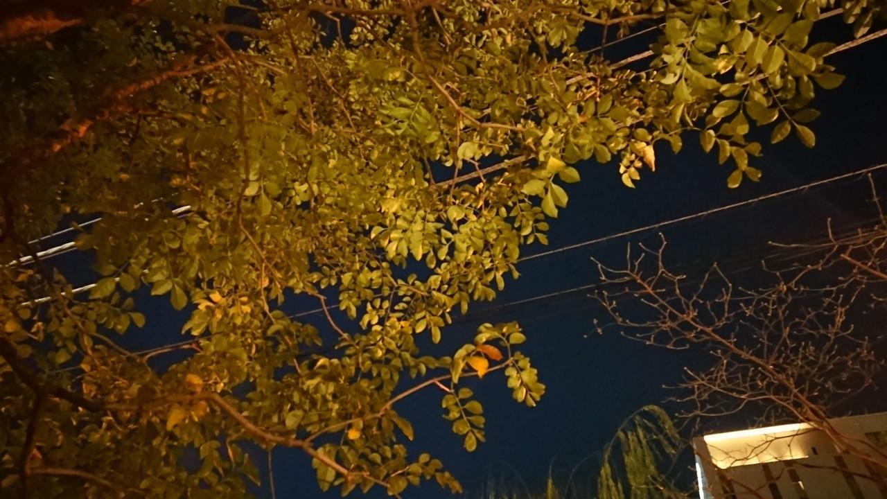 夜の景色。四角いお月様。