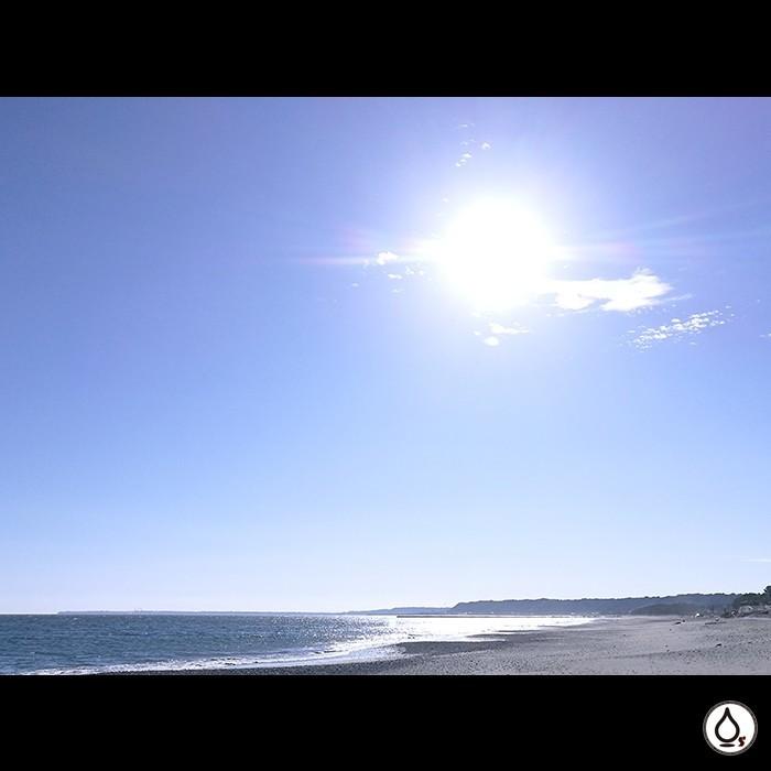 きょうはあったかかったー 波は伊豆がよかったそうです!  WATERS boutique of surfing  https://waters-bs.com/  #surf #surfer #surfing #trip #surftrip #shizuoka #japan #waters #サーフ #サーフィン #サーファー #トリップ #サーフトリップ #静岡 #日本 #伊豆